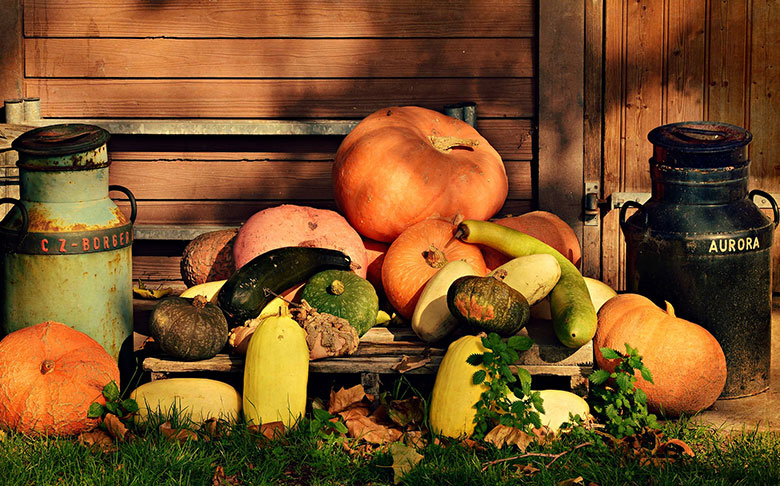 Pumpkins and gourds stacked in a holiday display.